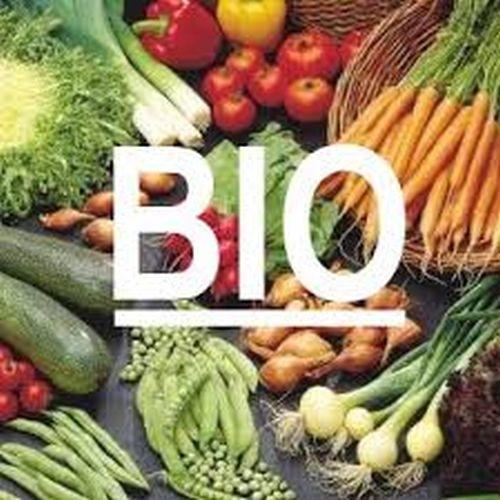 Biologische Samen